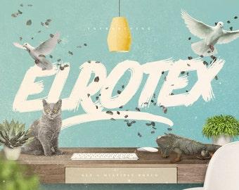 Elrotex Brush Font Modern Download Paintbrush Bold