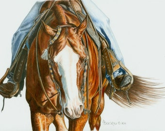 Colored Pencil Portrait of AQHA Western Saddle Horse