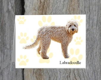 Labradoodle Note Cards