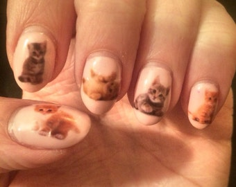 Kitten Nail Decals