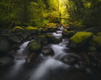 Pristine, Columbia River Gorge, Oregon, Creek, Stream, Waterfall, Pacific Northwest - Travel Photography, Print, Wall Art