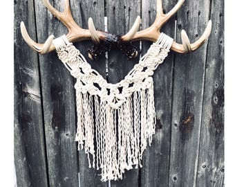 Macrame on Antlers (Wall Hanging, Wall Decor)