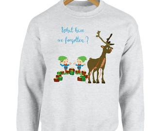 What Have We Forgotten? Printed Christmas Jumper Sweatshirt Xmas Festive Funny Cute Merry Jolly