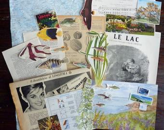 Lot vintage small fish / Vintage paper Bundle / vintage Ephemera