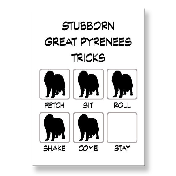 Great Pyrenees Stubborn Tricks Funny Fridge Magnet
