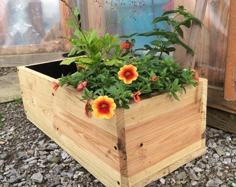 Combo Planter Box with Pond