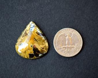 31 x 27 x 7 mm Simbircite -Ammonite  gemstone cabochon