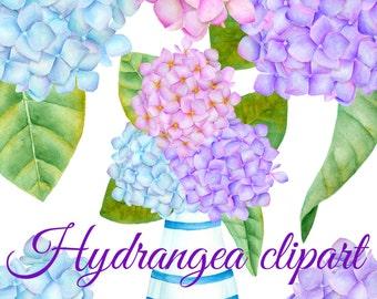 Hydrangea clipart, Watercolor clipart, Hand painted hydrangea clip art, Flower clipart, Hydrangea watercolor flower, Pink purple hydrangea