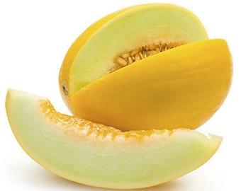 Melon JAUNE CANARY 2 seeds/ 1 g/ fresh seeds best before 2019/gardening seeds/vegetable seeds/heirloom seeds/non gmo