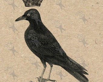 Antique image Crow with crown Vintage picture Instant Download printable clipart digital graphic for scrapbooking,  bags, etc HQ 300dpi