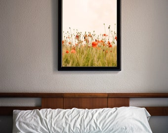 Printable Wall Art. Poppies, flowers, meadow. Creamy