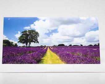 Greeting Card:  Lavender under a Big English Sky