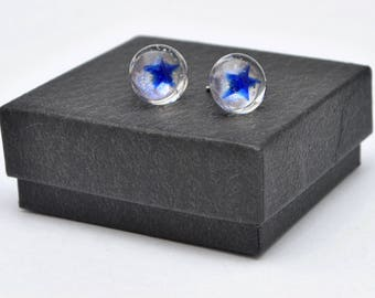 Blue star fused glass stud earrings