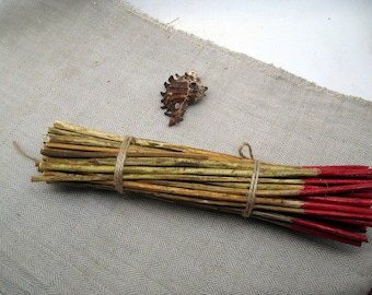 Dried yarrow stalks stems sticks achillee divination i ching 10 inches