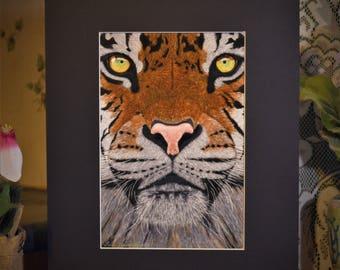 Tiger, Tiger Print, Tiger Painting, Tiger art, Wildlife art,Wildlife Prints,Tiger Portrait,Tiger Art Print,Tigers,Tiger prints.