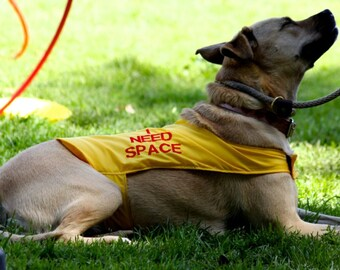 Special Needs Custom Dog Vest Embroidered