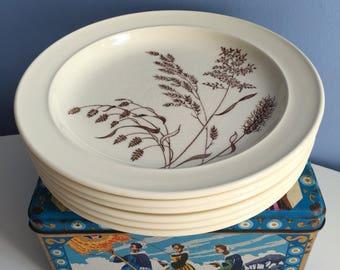 A Set of 6 Side Plates by Meakin Studio England. u0027Windsweptu0027 Floral Range. Midcentury Beige Cream Brown. Retro Dessert Tea Cheese Plates & Celeste plates | Etsy