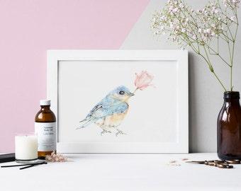 Bluebird Pencil Drawing, Wall Art, Blue Bird Print, Bird Print