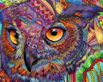 original art  drawing 16x20 Owl Concentration  colorful owl zentangle