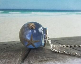 Real Starfish Underwater Marine (0017)
