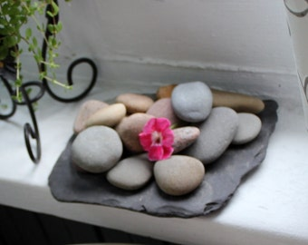 Natural Stone Air Plant Garden / Centerpiece , Instant Boho Collection , Green Living , Natural Home Decor