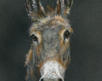 Soft pastel «sketch style2» portrait of your animal (18 X 24 cm) / Portrait pastel sec stylecroquis 2» de votre animal (18 X 24 cm)