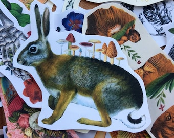 Mushroom Rabbit #9 surreal collage art handmade paper sticker japan