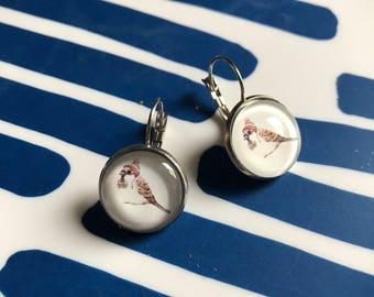 Bird glass cabochon earrings - 16mm