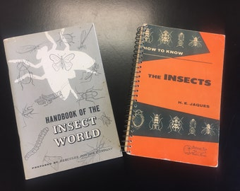 2 Vintage Insect Field Guides - 1930s and 1940s - Fantastic Illustrations
