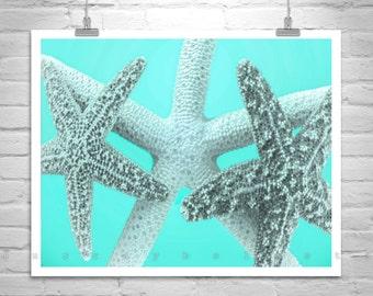 Blue Starfish Decor, Art for Bathroom, Starfish Art, Bathroom Decor, Starfish Print, Starfish Decor, Starfish Photograph, Gift for Bath