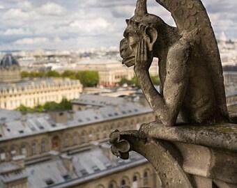 France, Paris, Notre Dame, Paris photography, panorama, Notre Dame photography, Paris print, Paris decor, wall art, fine art #058