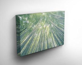 Fine art photography print, Kyoto, Arashiyama Bamboo Forest, Japan Landmark, Nature Photography, Modern Decor, Home Decor, Interior Design