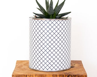 Checked for succulent or cactus pot