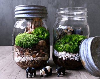 Mason Jar Terrarium: Black Bear, Panda, or Gorilla