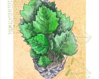 Leaf dreaming: Birch