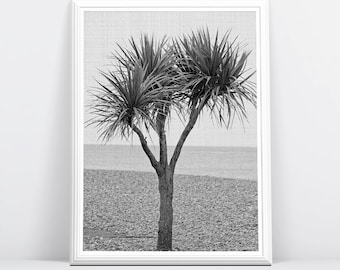 Beach Art, Beach Decor, Beach Photo, Palm Tree, Coastal Decor, Coastal Wall Art, Printable Large Poster, Digital Download, Black and White
