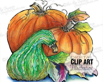 Watercolor Pumpkin Clipart | Autumn Clipart | Pumpkins Gourd Illustration | Digital Download Clip Art | Digital Scrapbooking