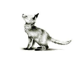 Fox Cub -- Woodland Animal Print // Pencil Illustration