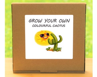 Unusual Windowsill Gardening Gift - Grow Your Own Colourful Flowering Cactus Plant Kit
