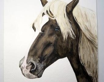 Surfer Dude- Original Chincoteague Pony Watercolor