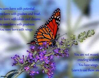 Rumi Quote Photography Monarch Butterfly Photos Butterfly Bush Images Flower Photography Floral Print Garden Blue Wall Decor Wildlife Nature
