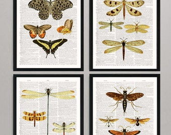 Wall art dictionary art prints insect and butterflies art set & beautiful wall decor. Buy 3 get 1 free! dictionary book page-8x10 inch