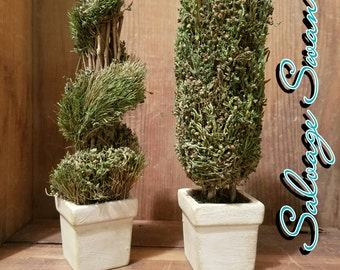 Topiary Decor, Set of 2 French Country Topiaries,  Small Greenery Decor, Cottage Decor, Shabby Topiary, Shabby Chic Planters