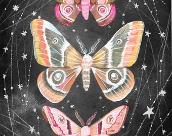 Wandering Moths Art Print  | Nocturnal Wall Art | Katie Daisy | 8x10 | 11x14