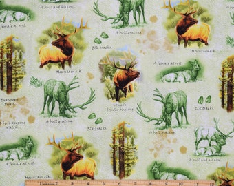 Elk Fabric Mountain Elk in Green From Quilting Treasures 100% Cotton