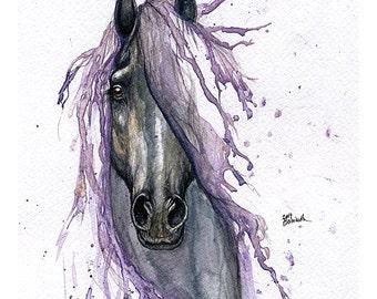 Horse portrait, equine art, equestrian, tattoo design, Framed original watercolour painting