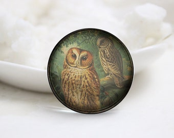 10mm 12mm 14mm 16mm 18mm 20mm 25mm 30mm Handmade Round Photo glass Cabochons Owl Image Glass Cover  (P2679)