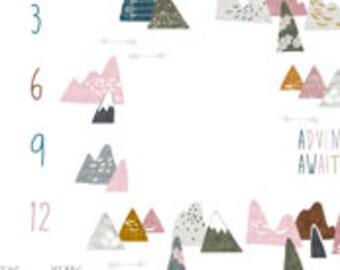 Milestone Blanket - Photo Prop - Knit Blanket - Minky Blanket - Monthly Photo Blanket - Adventure Awaits - Baby Girl Gift