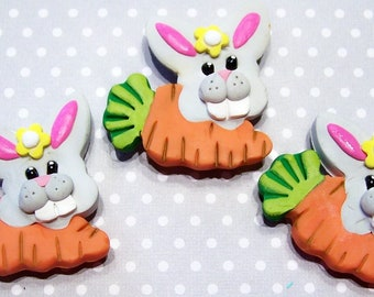 Magnet, Rabbit, Easter Bunny, Carrot, Home Decor, Kitchen Decor, Colorful, Gray, Handmade, Free Shipping, Polymer, Clay, Springtime, Easter