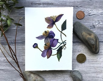 original realistic wildflower roses hellebores watercolor art painting wall art violet delicate floral botanical illustration small aquarell